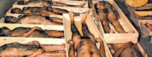 Após 21 anos, justiça condena 77 PMs por 73 mortes no Massacre do Carandiru